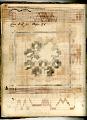 View George Lauck's Manuscript Weave Pattern Book; Pennsylvania, 1805-1829 digital asset number 17