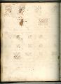 View George Lauck's Manuscript Weave Pattern Book; Pennsylvania, 1805-1829 digital asset number 147