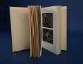 View Book, The Ancient Quipu or Peruvian Knot Record digital asset: Book, The Ancient Quipu by L. Leland Locke, Images