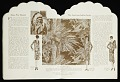 """View """"Blue Book"""" Mallinson's American Indian Series digital asset number 10"""