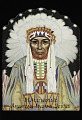 """View """"Blue Book"""" Mallinson's American Indian Series digital asset number 0"""