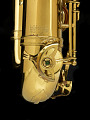View Selmer Tenor Saxophone used by John Coltrane digital asset number 3