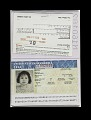 View Falsified Passport digital asset number 0