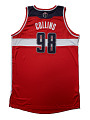 View Washington Wizards home game basketball jersey worn by Jason Collins, 2013 digital asset number 1