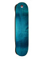View USA Skateboarding Autographed Skate Deck digital asset number 1