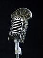 View WANN Radio Station Microphone digital asset number 0