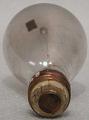 View Carbon Filament Lamp digital asset: Lamp, Edison bamboo filament