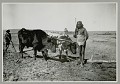 View Two Men in Native Dress with Ox Team Pulling Plow digital asset: Two Men in Native Dress with Ox Team Pulling Plow