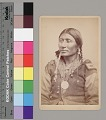 View Portrait of Chief ? Black Hawk Wearing Military ? Patches On Jacket, Ornaments, and Peace Medal 1867-75 digital asset number 0