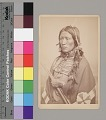 View Portrait of Young Man with Fur-Wrapped Braids and in Native Dress Wearing Blanket with Quillwork, and Hairpipe Choker And Breastplate and Holding Bow and Arrows 1867-75 digital asset number 1