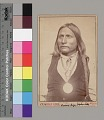 View Portrait of Zepko-Ette (Big Bow) with Wrapped Braid and Wearing Peace Medal 1867-75 digital asset number 1