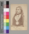 View Portrait of Zepko-Ette (Big Bow) with Wrapped Braid and Wearing Peace Medal 1867-75 digital asset number 0