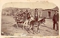 View Two Non-Native Men with Burro Carrying Firewood, Outside Brick Buildings; Young Burro Nearby n.d digital asset number 0