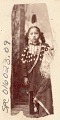 View Portrait of Young Girl in Native Dress, Including Elk-Tooth Shirt and Hairpipe Breastplate digital asset: Portrait of Young Girl in Native Dress, Including Elk-Tooth Shirt and Hairpipe Breastplate