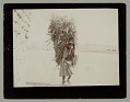 View Woman in Native Dress, Carrying Corn Fodder on Back n.d digital asset number 0