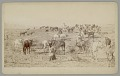 View Group in Native Dress with Horses on Issue Day n.d digital asset number 1