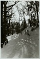 View Roadway in cemetery with snow DEC 1969 digital asset number 0
