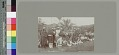 View Group near palm trees;, wood frame building and telephone pole in background Copyright 12 FEB 1897 digital asset number 1