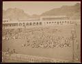 View Camel Market 1894 digital asset number 1