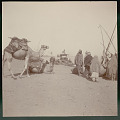 View Group in Costume with Camel Caravan Near Felucca (Sailboat) On Shore; Passenger Boat with American Flag in Distance on River 1904 digital asset number 1