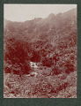 View Puerto Rican Coffee Plantation and Stream Near Military Dirt Road 1901 digital asset number 1