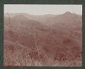 View Puerto Rican Landscape and Military Dirt Road 1901 digital asset number 0