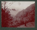View Puerto Rican Landscape 1901 digital asset number 1