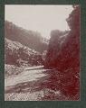 View Puerto Rican Dirt Military Road Through Mountains 1901 digital asset number 1