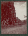 View Puerto Rican Dirt Military Road Through Mountains 1901 digital asset number 0
