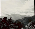 View View of Sub-Tropical Forest, and Mountains Covered with Conifer Forests in Distance 1954 digital asset number 1