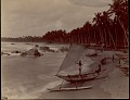 View Sinhalese men with outrigger canoes on beach, undated digital asset number 0