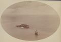 View View of Two Islands Off Southwest Point of Island DEC 1886 digital asset number 0