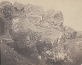 View Large Boulder Inscribed with Anthropomorphic Designs DEC 1886 digital asset number 0