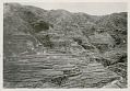 View View of Hillside Rice Terraces n.d digital asset number 1