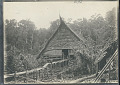 View View of Pole and Thatch House and Raised Walkway n.d digital asset number 0
