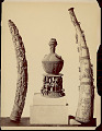 View Tusk carved with human and animal figures; container with human Figures n.d digital asset number 1