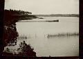 View View of Fish Traps in Water and Habitations on Shore 06 SEP 1925 digital asset number 1