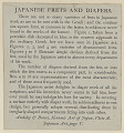 View Japanese Frets and Diapers n.d. Photo-Lithograph digital asset number 0