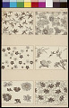 View Wall-Paper Designs n.d. Photo-Lithograph digital asset number 1