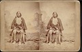 "View ""Big Bow, Chief of Kiowa"" 1880s digital asset number 0"