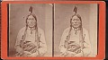 "View ""Fish Hook, Sioux chief"" digital asset number 0"