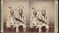 "View ""First and second chiefs of the Mandans"" digital asset number 0"