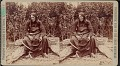 """View """"Two Strike, second chief of the Brule Sioux"""" digital asset number 0"""
