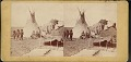"""View """"Yanktonite (Sioux) tepees. Fort Rice, D.T."""" digital asset number 0"""