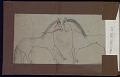 View Roan Eagle book of drawings digital asset: Roan Eagle book of drawings