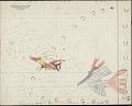 View Kiowa drawing, possibly by Koba or Etadleuh, of mounted Kiowa warrior attacking Navahos digital asset: Kiowa drawing, possibly by Koba or Etadleuh, of mounted Kiowa warrior attacking Navahos