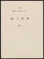 View Pencil drawing by George Bushotter with caption 49 Illustration 1887 digital asset number 0