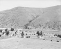 View View of Village Made of Tipis, Tents, and Wood Frame Buildings; Cultivated Crop and Clearwater River Nearby 1892 digital asset number 1