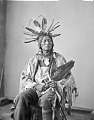 View William Henry Jackson photograph albums based on his Descriptive Catalogue of Photographs of North American Indians digital asset: Portrait (Front) of Hatona or He-Otal (Many Horns) wearing headdress and holding pipe and feather fan