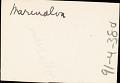View Adpoted daughter of Manoel da Silva, chief drummer at Gantois, 1938 December digital asset number 0